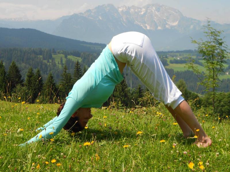 Grunderin Von Foundations Of Yoga Sheyda Schreiber Foundations Of Yoga